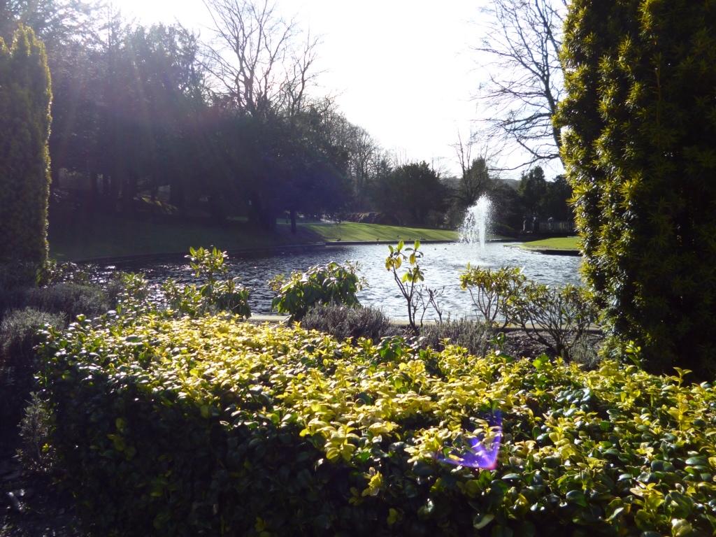 Photo Essay: Peaking it in the District of England YO YO!