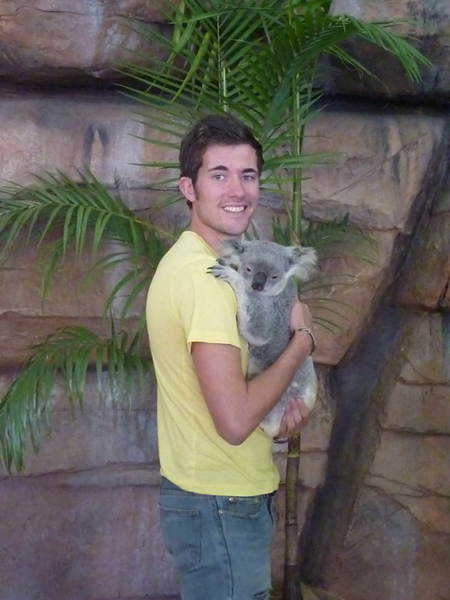 Wish You Were the Koala?