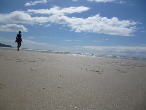 Cape Tribulation to the Outback