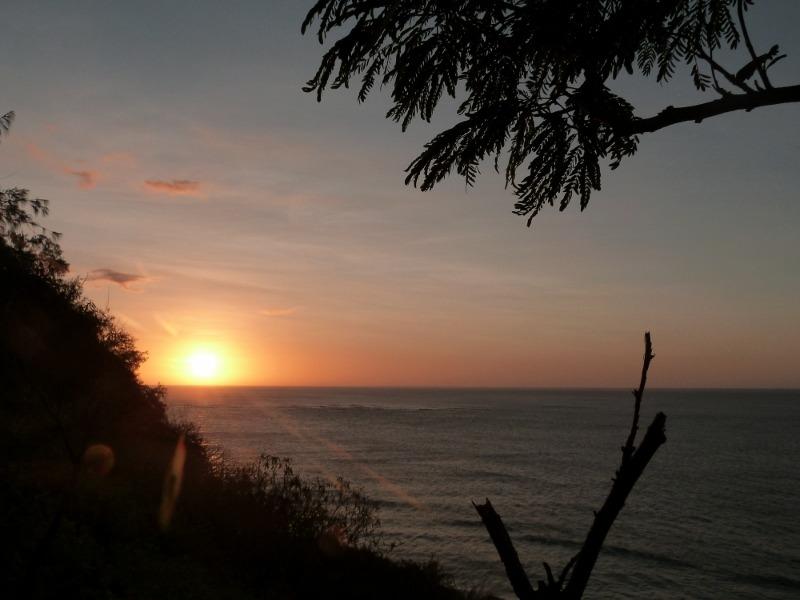 Sunset mantaray