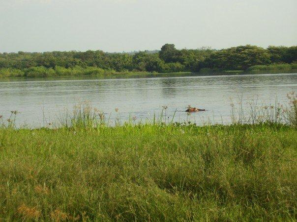 Uganda Project, River Nile
