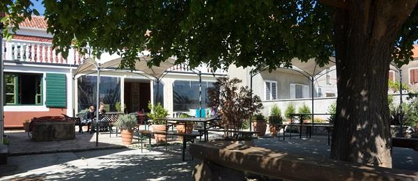 The Wild Fig Hostel Garden