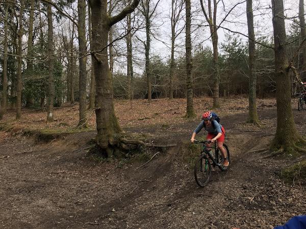 Mountain Biking, PedalaBikeAway, Forest of the Dean