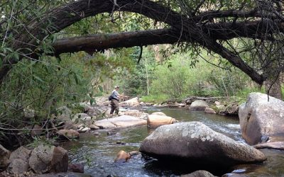 Pack Your Fishing Kayak: Here's 8 Fishing Hotspots in Colorado